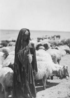 Ο Μάγος και τα Πρόβατα του Γ.Ι Γκουρτζίεφ